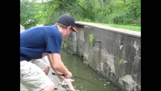 getlinkyoutube.com-Bass fishing with crankbaits
