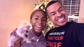 getlinkyoutube.com-Life With The Logans - Season 3 🎄 VLOGMAS #3  - Puppy Haul/Christmas Tree Decorating!