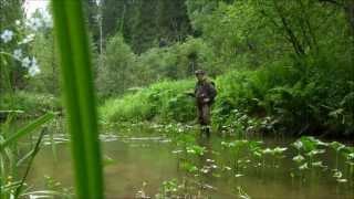getlinkyoutube.com-Рыбалка нахлыстом на ручьях
