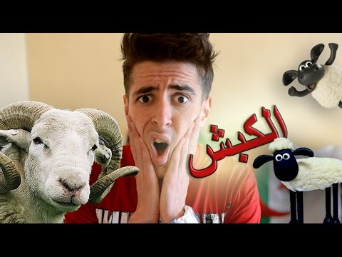 Mr SaLiMDZ_Kebch Ghali-مشروع كبش عيد الأضحى في الجزائر