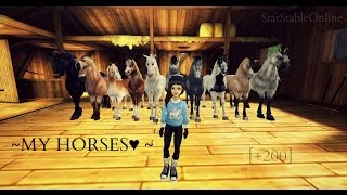 getlinkyoutube.com-SSO - My Horses 2015!★   [+200subs♥]