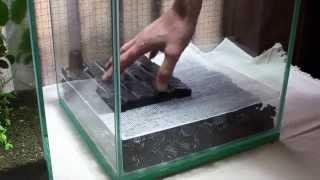 getlinkyoutube.com-実験水槽その1 底面式で沈殿層がある水槽を立ち上げてみた Undergravel Filter Aquarium Setup