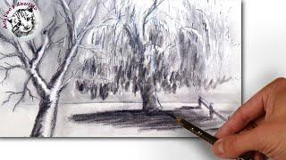 getlinkyoutube.com-Cómo Dibujar un Paisaje con Sauces al Carboncillo: Técnica de Dibujo