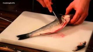 getlinkyoutube.com-Разделка рыбы на филе.Как правильно разделать рыбу?