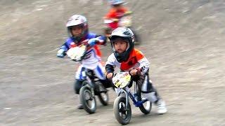 getlinkyoutube.com-ANAK KECIL BALAP SEPEDA BMX LUCU - Jogjakarta Bike Racing, Youth Center Circuit  (BMX INDONESIA)