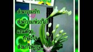 getlinkyoutube.com-สวัสดีวันพุธ By Pa Dang
