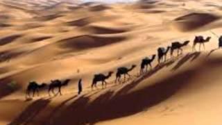 getlinkyoutube.com-كلمات الشاعر محمود بن محمد بن سليم بن لعفاد الوهيبي