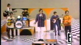 getlinkyoutube.com-The Turtles - Happy Together - 1967