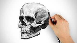 getlinkyoutube.com-Draw a Skull - Halloween Special