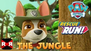 getlinkyoutube.com-PAW Patrol Rescue Run - The Jungle New Update feat. Tracker & Skye