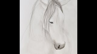 getlinkyoutube.com-Cómo pintar un caballo con tinta china - Arte Divierte.