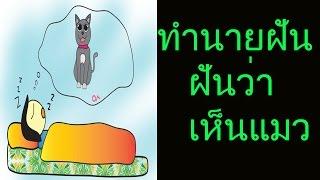 getlinkyoutube.com-ฝันเห็นแมว (พร้อมเลขเด็ด)