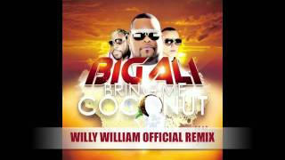 Big Ali - Willy William Remix (ft. Lucenzo & Gramps Morgan)