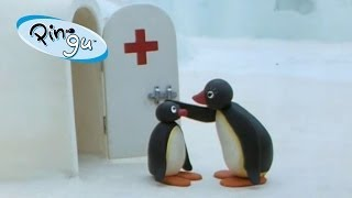 getlinkyoutube.com-Pingu: Pingu at the Doctor