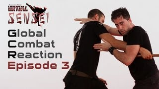 Ninjutsu self defense - Ep. 3 - Stick and front kick