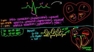 getlinkyoutube.com-EKG or ECG- Simple Simple!