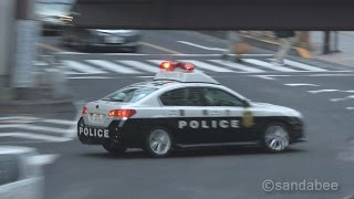 getlinkyoutube.com-白バイvs.パトカー警視庁交通取り締まり。Police Motorcycle vs. Police Car.