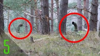 getlinkyoutube.com-5 Creepiest Things Found in the Woods | Dark5