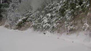 スズキエブリー 4WD の実力。雪深さ15cm勾配10°以上