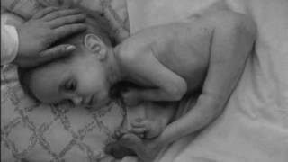 getlinkyoutube.com-Chernobyl accident