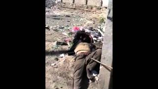 getlinkyoutube.com-مجنون اليمن