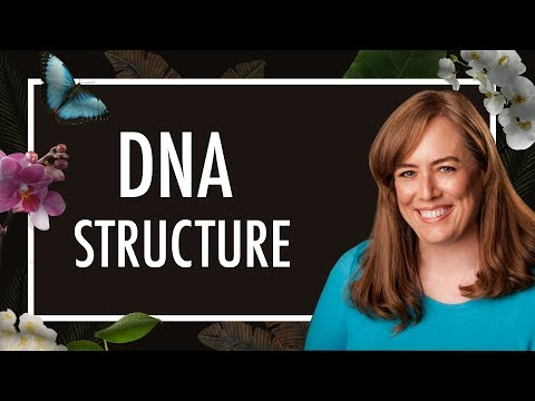 What is DNA Structure?  How to Make a Double Helix with a 3D Pen | Biology | Biochemistry