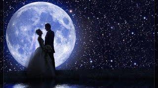 getlinkyoutube.com-Армянская свадьба  89183029665