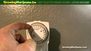 getlinkyoutube.com-Light Cycles For Cannabis Growing - Lighting Marijuana