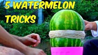 getlinkyoutube.com-5 Watermelon Tricks