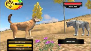 getlinkyoutube.com-WolfQuest: How to get a mate