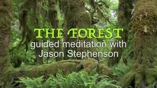 Before Sleep (Eyes Open) Guided Visual Meditation: The Forest Relaxation hypnosis