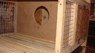 getlinkyoutube.com-Кролики, маточник своими руками, постройка