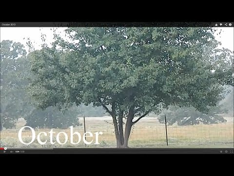 Document Your Life: October 2013