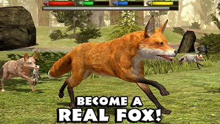 getlinkyoutube.com-Ultimate Fox Simulator- Part 1- By  Gluten Free Games - Simulation - IOS/Android