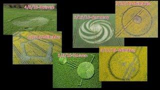 getlinkyoutube.com-Secret Messages in 2016's  crop circles