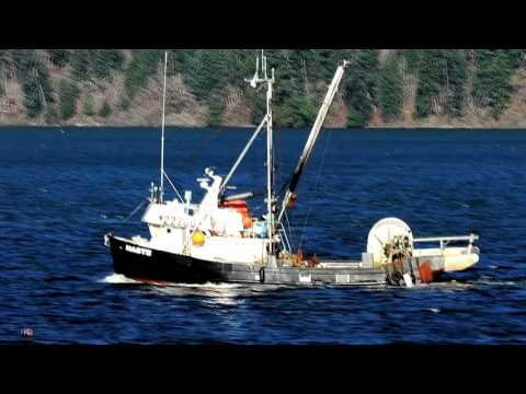 Click to view video Fish Boat in Cowichan Bay Vancouver Island Canada