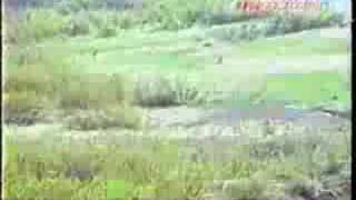 getlinkyoutube.com-ヒグマに追われる釣り人