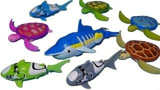 getlinkyoutube.com-슈퍼피쉬 돌고래 로봇피쉬 꼬마거북이 물놀이 목욕놀이 장난감 Robot Fish Dolphin Toys