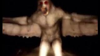 getlinkyoutube.com-Top Ten Real Creatures Caught On Tape