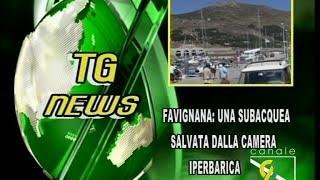 Tg News 01Luglio 2016