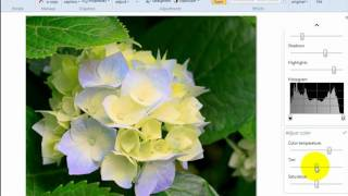 getlinkyoutube.com-How to edit photos with Windows Live Photo Gallery