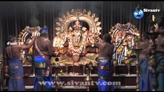 இணுவில் கந்தசுவாமி கோவில் மஞ்சத்திருவிழா