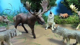 getlinkyoutube.com-Happy Surprise Toy Animal Figures