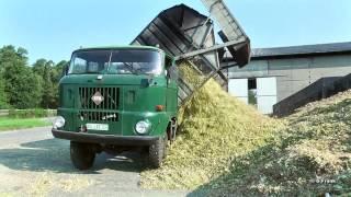 getlinkyoutube.com-DDR Landmaschinen IFA W 50 LAZ in der Maisernte