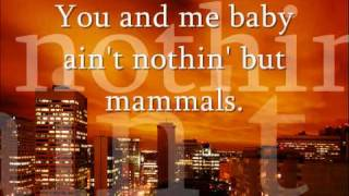 getlinkyoutube.com-~Bloodhound Gang - The Bad Touch (Lyrics On Screen)~