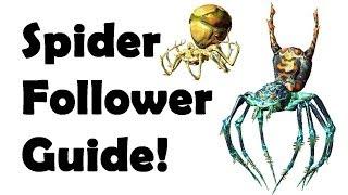 getlinkyoutube.com-Skyrim: Secret SPIDER Follower (How to make) Spider Scroll Recipes