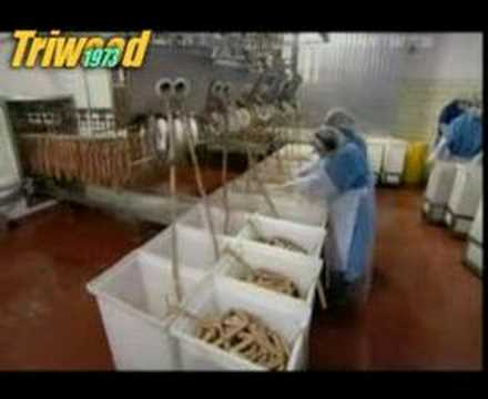 Mass Producing Hot Dogs in a Factory