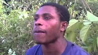 Banci papua