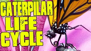 getlinkyoutube.com-SURVIVE AS A CATERPILLAR TILL REACHING BUTTERFLY STAGE! - (Drunk On Nectar Gameplay)