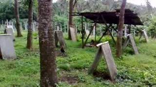 getlinkyoutube.com-Batangas Farm